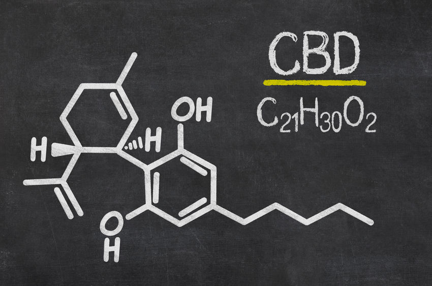 Fleur CBD : Comment voir les bienfaits sur la santé générale?